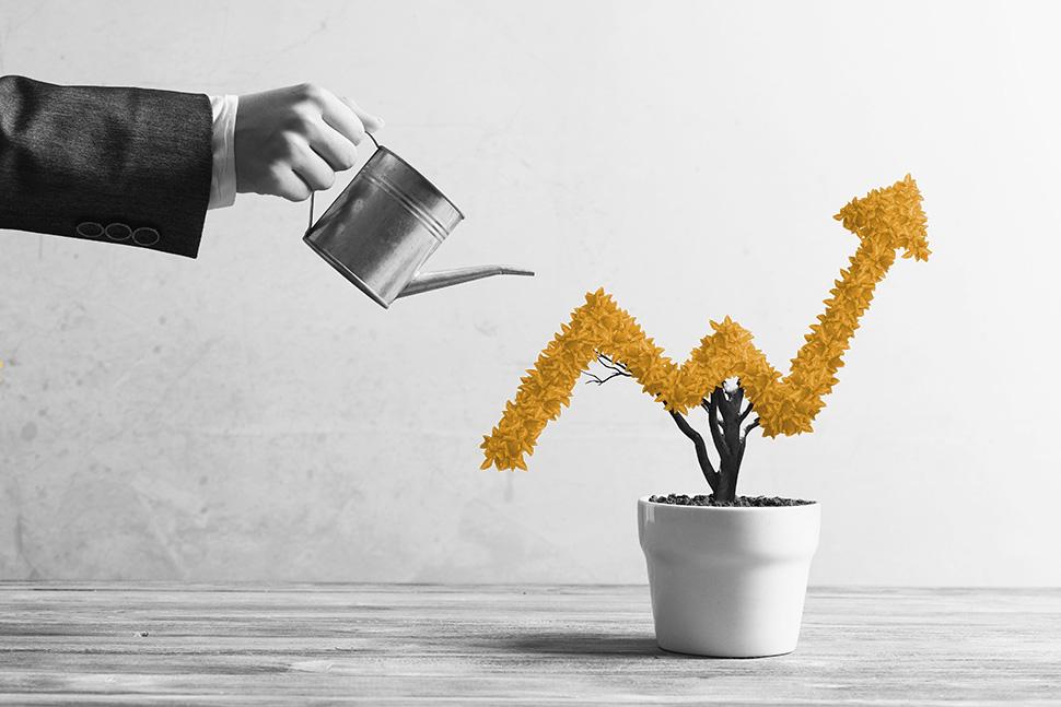 kivi GmbH: Investments